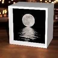 Black & White Moon Light Box