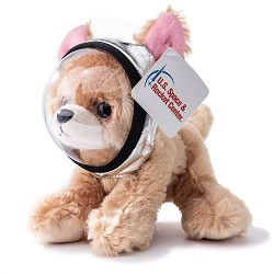 Miniz Chihuahua with Space Helmet