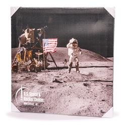 Lunar Scene Canvas